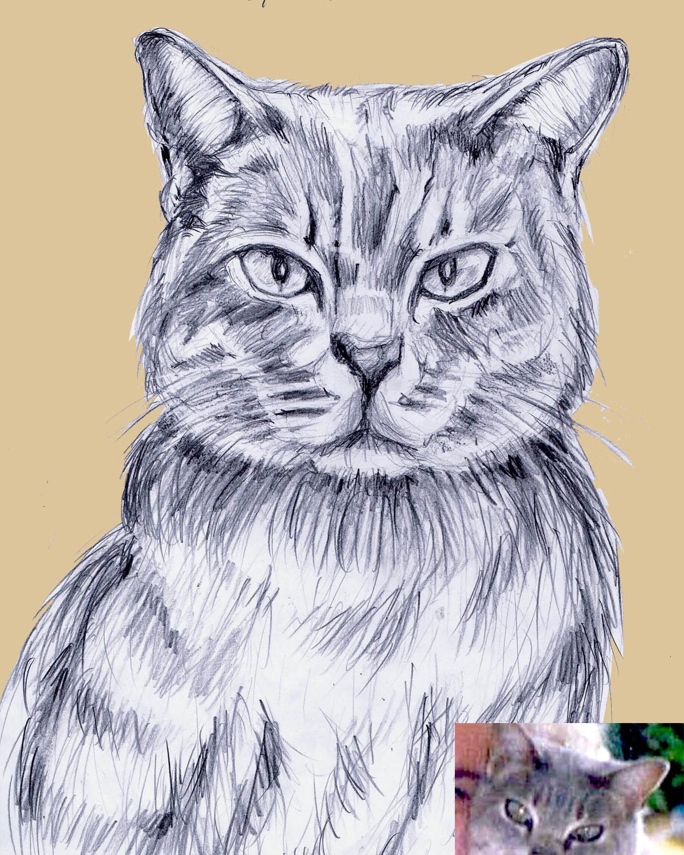 realistic cat 1